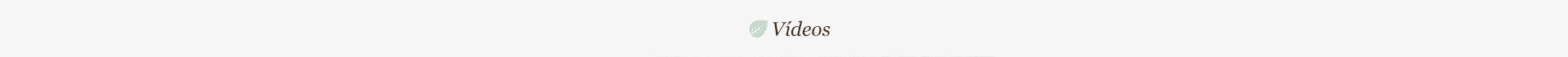 galeria-faixa-videos